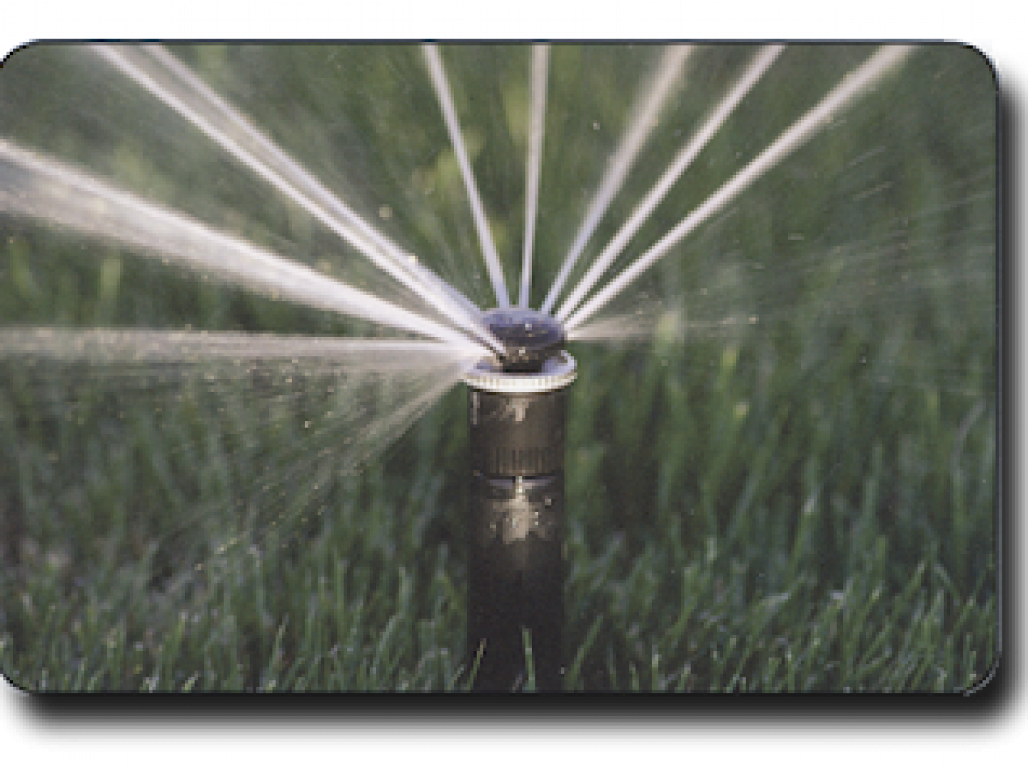 Are your sprinkler nozzles clogged?